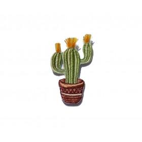 Naszywka Cactus