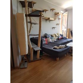 Instalacja dla kota, kot, drapak, kotów na ścianę model #31